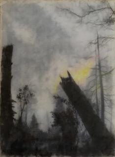Galerie Benjamin Eck München graphite, colored pencil, mylar, resin
