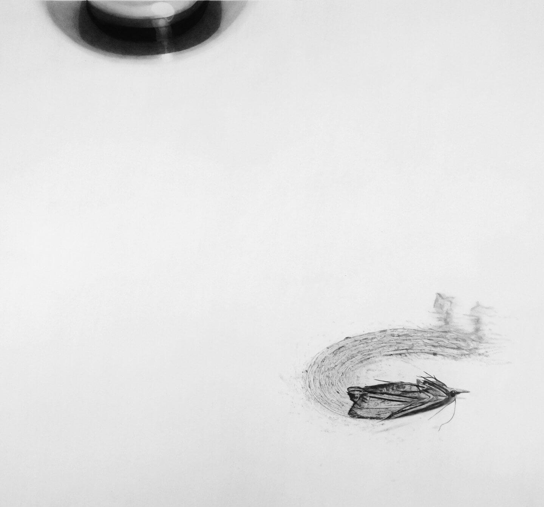 Galerie Benjamin Eck München Pencil on paper