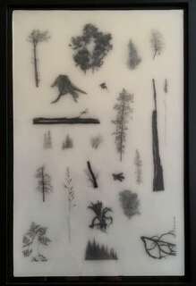 Galerie Benjamin Eck München graphite, ink, mylar, resin