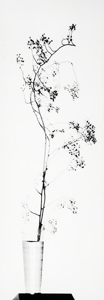 Galerie Benjamin Eck München Original on silvergelatine - direct paper super gloss