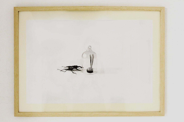 Galerie Benjamin Eck München FLAVIO APEL 'o.T.', pencil on paper, 60cm x 40cm, 2016