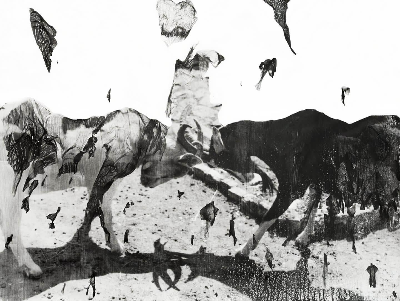 Galerie Benjamin Eck München Analog b/w photograph, photoemulsion on watercolor paper